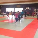 stage judo club boos 76